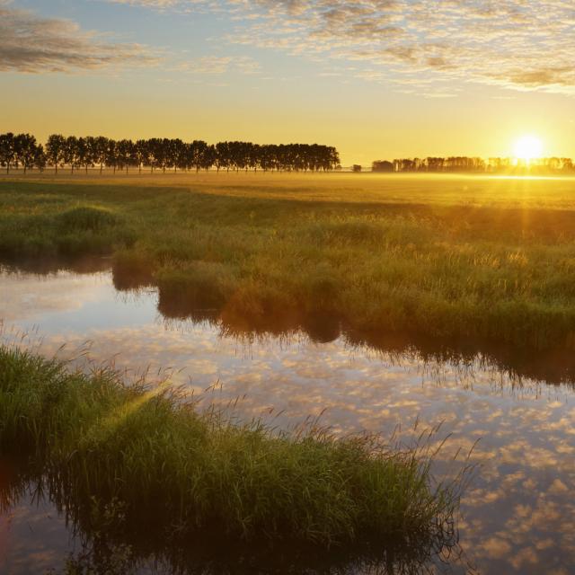 Ontdek de Biesbosch vanuit deze mooie plek aan het water